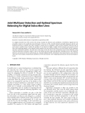 "Báo cáo hóa học: "" Joint Multiuser Detection and Optimal Spectrum Balancing for Digital Subscriber Lines"""
