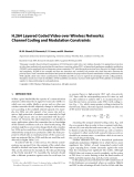 """Báo cáo hóa học: """" H.264 Layered Coded Video over Wireless Networks: Channel Coding and Modulation Constraints"""""""