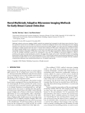 """Báo cáo hóa học: """" Novel Multistatic Adaptive Microwave Imaging Methods for Early Breast Cancer Detection"""""""