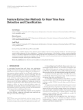 "Báo cáo hóa học: "" Feature Extraction Methods for Real-Time Face Detection and Classification"""