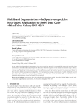 "Báo cáo hóa học: "" Multiband Segmentation of a Spectroscopic Line Data Cube: Application to the HI Data Cube of the Spiral"""