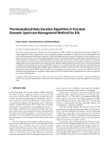 """Báo cáo hóa học: """" The Normalized-Rate Iterative Algorithm: A Practical Dynamic Spectrum Management Method for DSL"""""""
