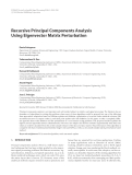 "Báo cáo hóa học: ""  Recursive Principal Components Analysis Using Eigenvector Matrix Perturbation"""