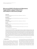 "Báo cáo hóa học: "" Microarray BASICA: Background Adjustment, Segmentation, Image Compression and Analysis of Microarray Images"""