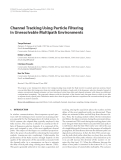 """Báo cáo hóa học: """"Channel Tracking Using Particle Filtering in Unresolvable Multipath Environments"""""""