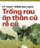 Ebook Kỹ thuật trồng rau sạch: Trồng rau ăn thân củ, rễ củ - PGS.TS. Tạ Thu Cúc