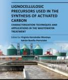 Lignocellulosic Precursors used in the synthesis of Activated carbon - characterization techniques And Applications in the Wastewater treatment