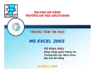 MS Excel 2003
