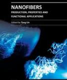 NANOFIBERS –  PRODUCTION, PROPERTIES AND FUNCTIONAL APPLICATIONS - P1