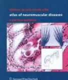 Atlas of Neuromuscular Diseases: A Practical Guideline