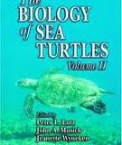 The BIOLOGY of SEA TURTLES Volume II