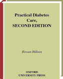 Practical Diabetes Care, SECOND EDITION