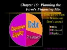 Financial Management - Chapter 16