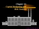 Financial Management - Chapter 11