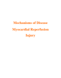 Mechanisms of Disease Myocardial Reperfusion Injury