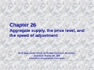 Chapter: Aggregate supply, the price level, and the speed of adjustment