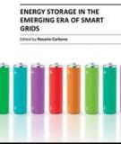 ENERGY STORAGE IN THE EMERGING ERA OF SMART GRIDS_2
