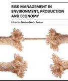 RISK MANAGEMENT IN ENVIRONMENT, PRODUCTION AND ECONOMY