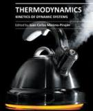 THERMODYNAMICS – KINETICS OF DYNAMIC SYSTEMS