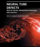NEURAL TUBE DEFECTS – ROLE OF FOLATE, PREVENTION STRATEGIES AND GENETICS