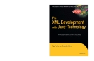 Pro XML Development with JavaTM Technology