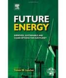 Energy Options for the Future*