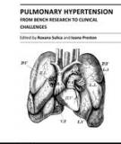 PULMONARY HYPERTENSION – FROM BENCH RESEARCH TO CLINICAL CHALLENGES