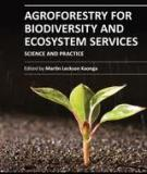 AGROFORESTRY FOR BIODIVERSITY AND ECOSYSTEM SERVICES – SCIENCE AND PRACTICE