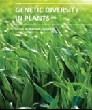 GENETIC DIVERSITY IN PLANTS