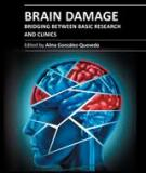 BRAIN DAMAGE – BRIDGING BETWEEN BASIC RESEARCH AND CLINICS