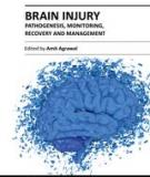 BRAIN INJURY – PATHOGENESIS, MONITORING, RECOVERY AND MANAGEMENT