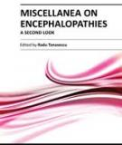 MISCELLANEA ON ENCEPHALOPATHIES – A SECOND LOOK