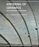 SINTERING OF CERAMICS – NEW EMERGING TECHNIQUES_2