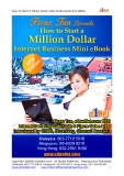 How To Start A Million Dollar Internet Business Mini eBook