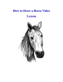 How to Draw a Horse Video Lesson