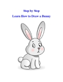 Step by Step Learn How to Draw a Bunny