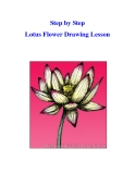 Step by Step Lotus Flower Drawing Lesson