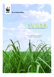 SUGAR AND THE ENVIRONMENT