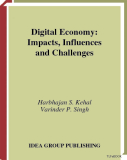 Sách Digital Economy: Impacts, Influences and Challenges