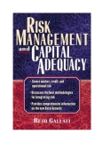 Risk management and capital adequacy Systemic Risk