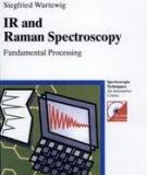 IR and Raman Spectroscopy Fundamental Processing