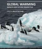 GLOBAL WARMING – IMPACTS AND FUTURE PERSPECTIVE