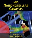 SURFACE AND NANOMOLECULAR CATALYSIS - PART 2 (end)