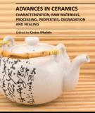 ADVANCES IN CERAMICS CHARACTERIZATION, RAW MATERIALS, PROCESSING, PROPERTIES, DEGRADATION AND HEALING