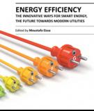 ENERGY EFFICIENCY – THE INNOVATIVE WAYS FOR SMART ENERGY, THE FUTURE TOWARDS MODERN UTILITIES