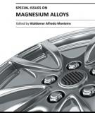 SPECIAL ISSUES ON MAGNESIUM ALLOYS