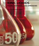 IONIC LIQUIDS: THEORY, PROPERTIES, NEW APPROACHES