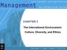 Management-CHAPTER 3 The International Environment: Culture, Diversity, and Ethics