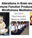 Alterations in Brain and Immune Function Produced by Mindfulness Meditation