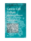 Cancer Cell Culture Methods and Protocols